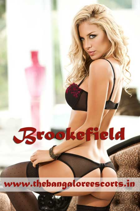 Escorts in Brookefield